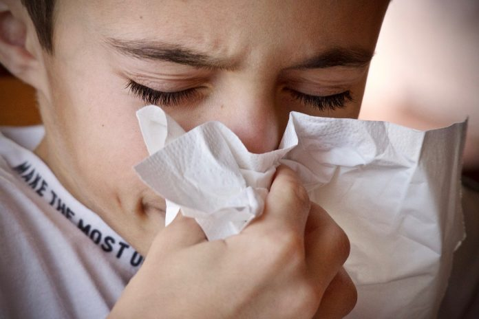 Allergies des enfants : gérer au quotidien