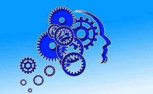 épilepsie et cerveau
