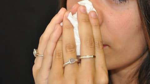 Les graminées sont à l'origine des allergies actuelles