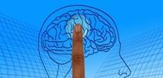 Les neurosciences parviennent à manipuler le cerveau