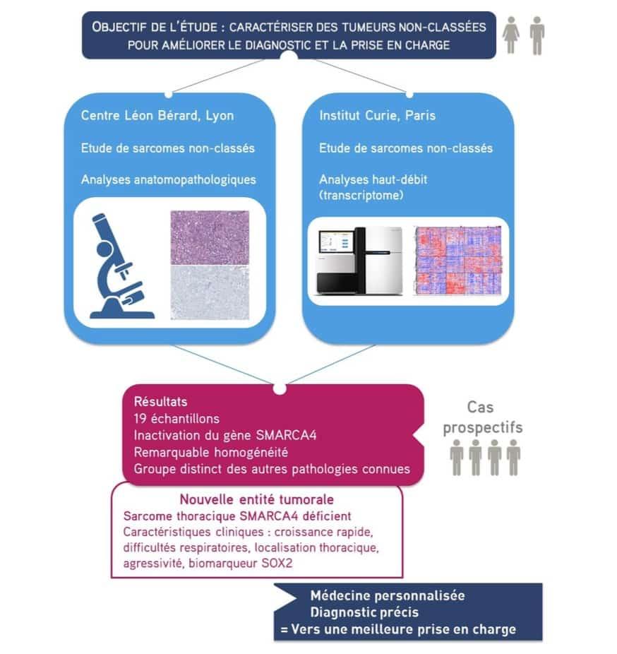 cancer des chercheurs lyonnais d couvrent un nouveau sarcome. Black Bedroom Furniture Sets. Home Design Ideas
