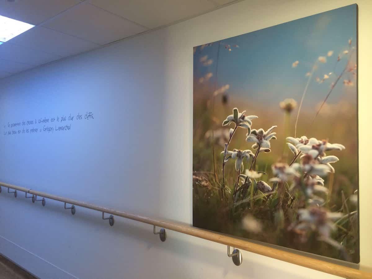 L'esprit de Grégory Lemarchal demeure dans l'unité de l'hôpital Louis Pradel dédiée à la mucoviscidose