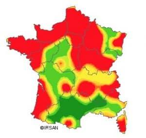 La gastro-entérite est en hausse en Auvergne Rhône-Alpes