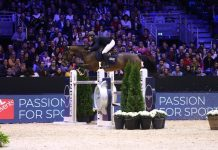 cheval equita lyon