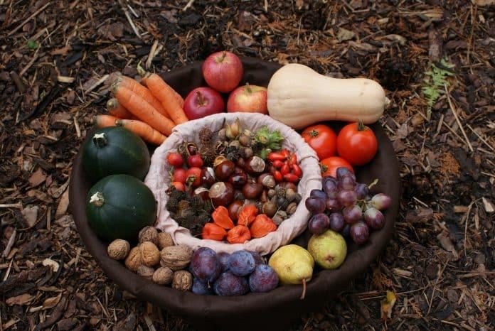 Image d'illustration : fruits et légumes d'automne