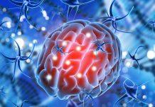 Impact du Covid-19 sur le cerveau.