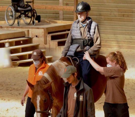 le cheval au secours des séquelles d'un AVC