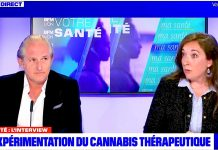 cannabis thérapeutique interview